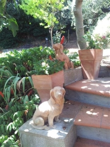 Terracotta dogs guarding the steps to the orchard. Phot P Finnigan