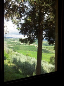 Green August countryside through our guest bedroom window. Photo J Finnigan