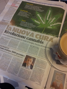 Cannabis arrives! Il Terrano newspaper