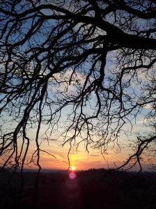 Georgeous sunset last Friday evening. Photo J Finnigan