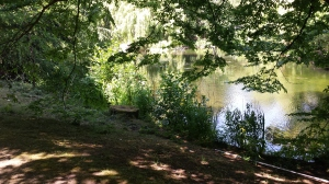 A sneaky photo of the lake in the Palace gardens.   Photo P Finnigan