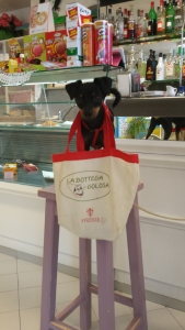 Shopping Dog in Laura's Bar/Alimentare. Photo P Finnigan