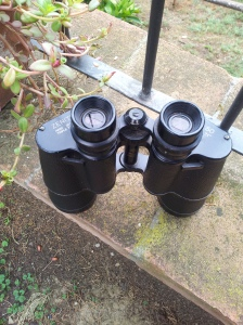 The man's vintage binoculars at the ready. Photo J Finnigan