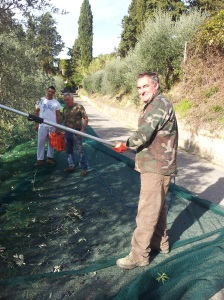 Aleesandro and his team collecting the olives next to our villa. Photo J Finnigan