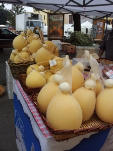 Big cheeses or strange fruit? Photo J Finnigan