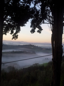 Fog filled valleys, below us, at dawn. Foto J Finnigan