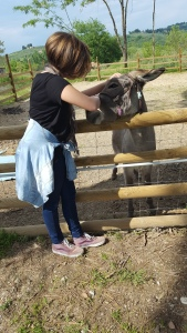 Jeffery the newly named donkey at Villa Bacio, with our granddaughter. Foto P Finnigan