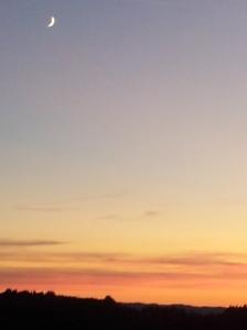 Fabulous sunset with moon last night. Foto J Finnigan