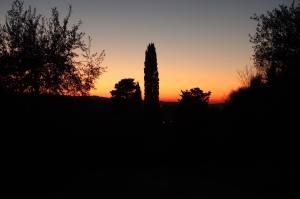 The final sunset of 2016. Foto J Fielding.