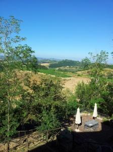 Goodmorning Tuscany june 19