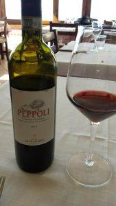 Peppoli wine