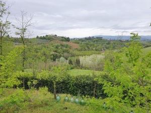 green view grey sky april 2020